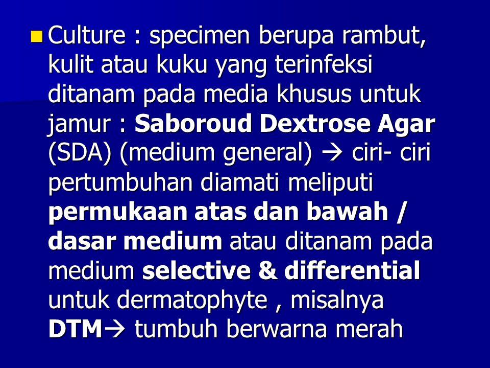 Culture : specimen berupa rambut, kulit atau kuku yang terinfeksi ditanam pada media khusus untuk jamur : Saboroud Dextrose Agar (SDA) (medium general)  ciri- ciri pertumbuhan diamati meliputi permukaan atas dan bawah / dasar medium atau ditanam pada medium selective & differential untuk dermatophyte , misalnya DTM tumbuh berwarna merah