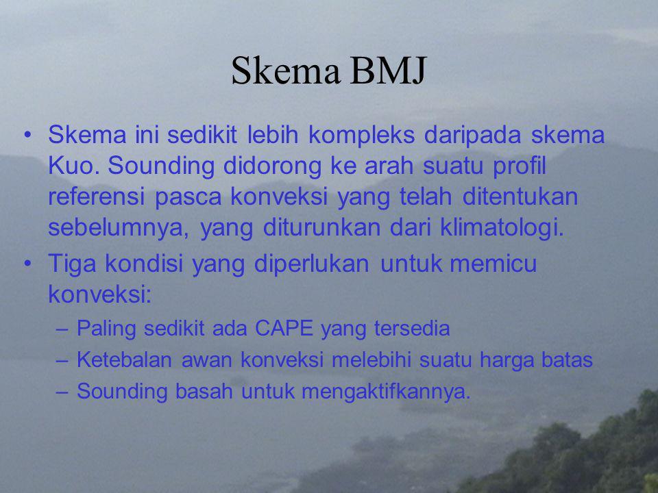 Skema BMJ