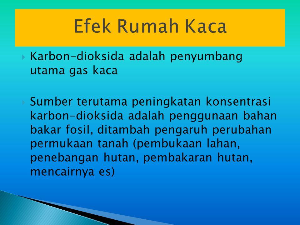 Efek Rumah Kaca Karbon-dioksida adalah penyumbang utama gas kaca