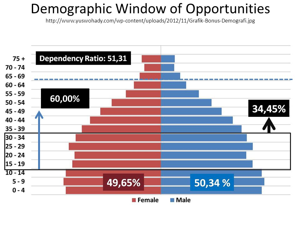 Demographic Window of Opportunities http://www. yuswohady