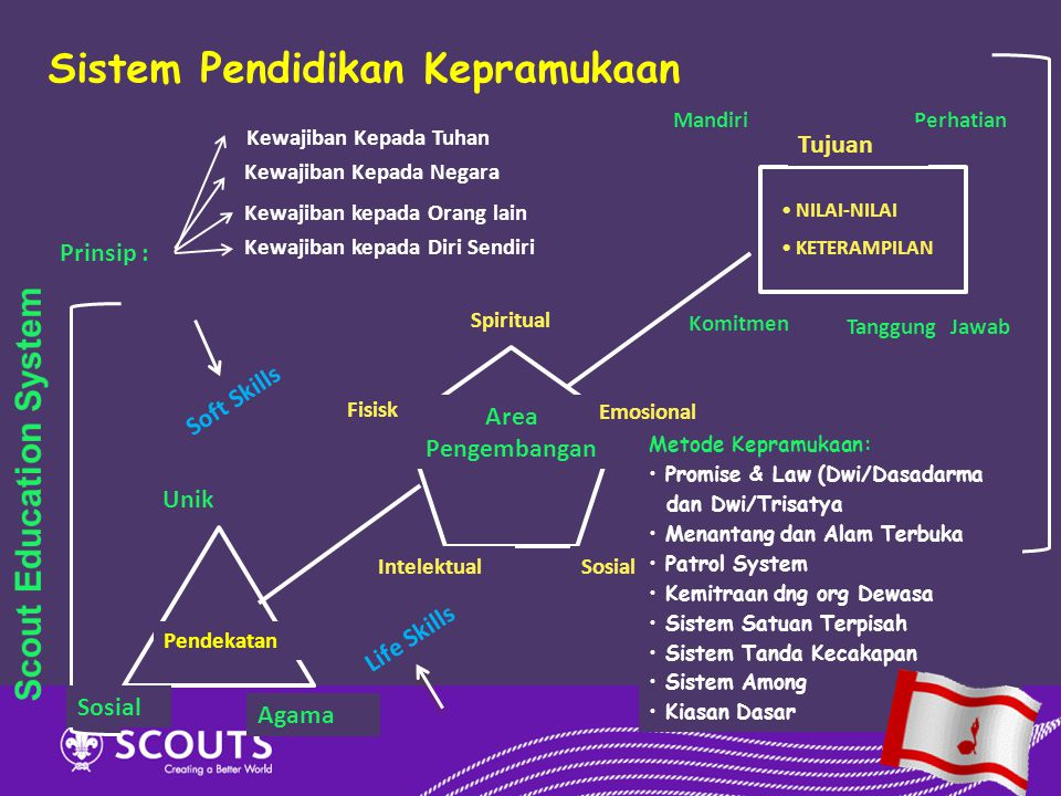 Scout Education System