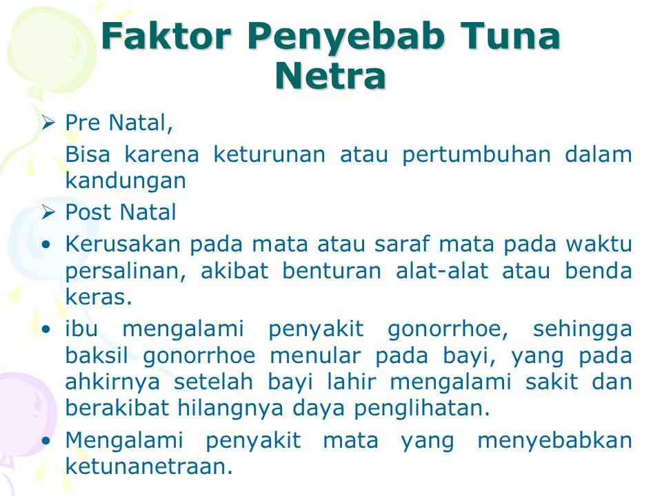 Faktor Penyebab Tuna Netra