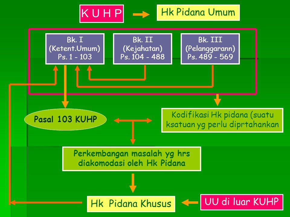 Perkembangan masalah yg hrs diakomodasi oleh Hk Pidana