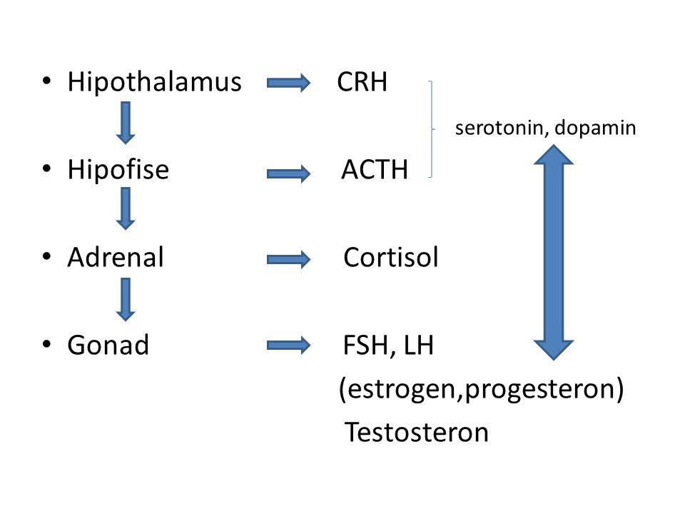 Hipothalamus CRH serotonin, dopamin. Hipofise ACTH. Adrenal Cortisol.