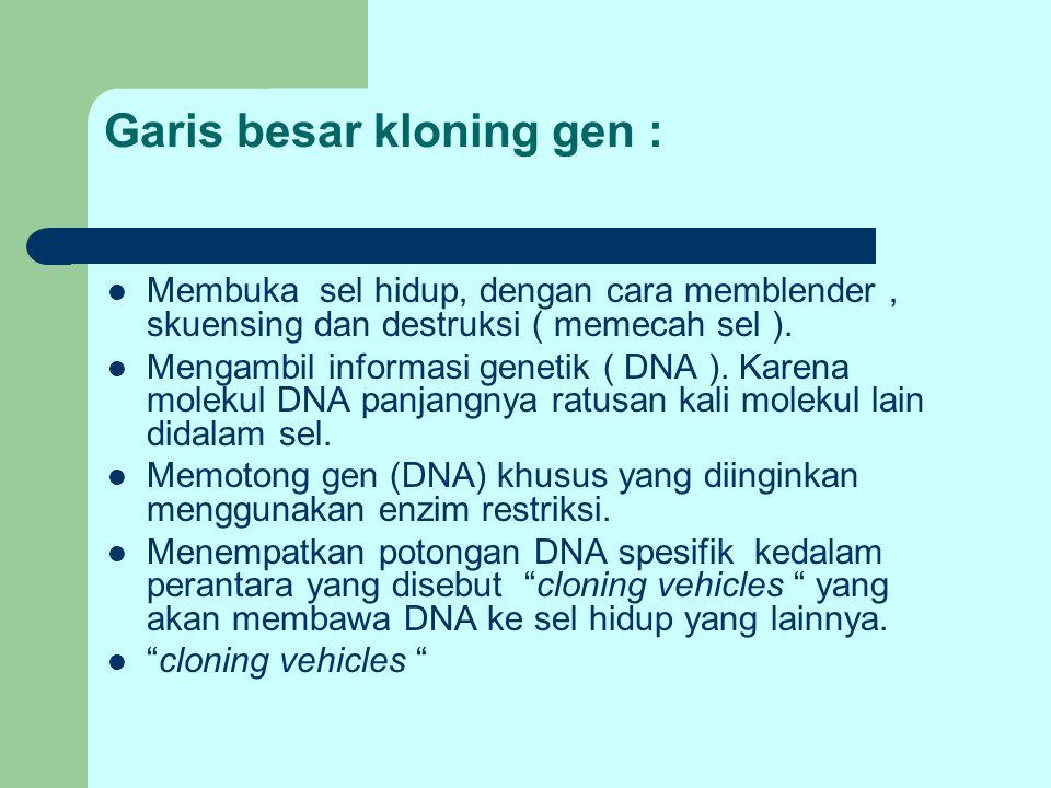 Garis besar kloning gen :