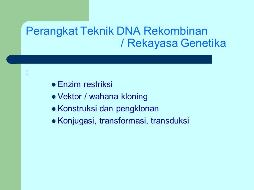 Perangkat Teknik DNA Rekombinan / Rekayasa Genetika