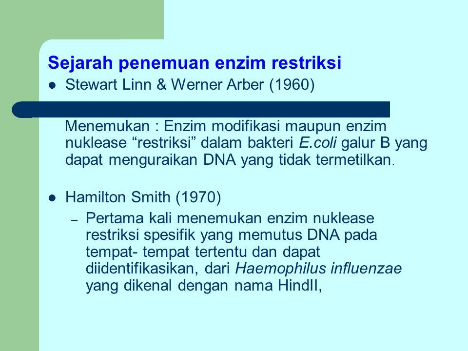 Sejarah penemuan enzim restriksi