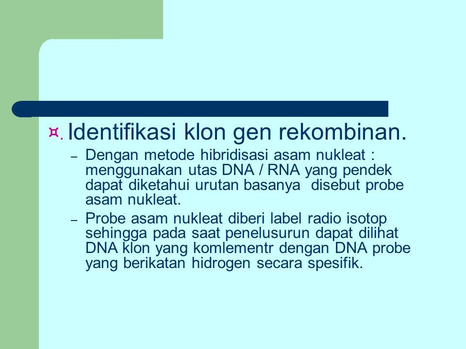 ¤. Identifikasi klon gen rekombinan.