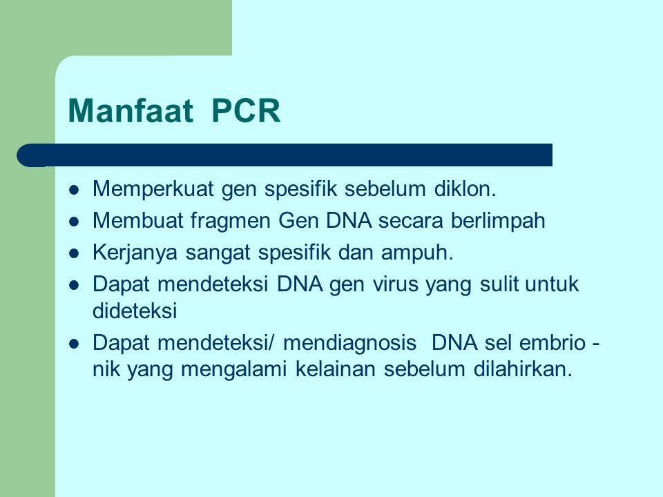 Manfaat PCR Memperkuat gen spesifik sebelum diklon.