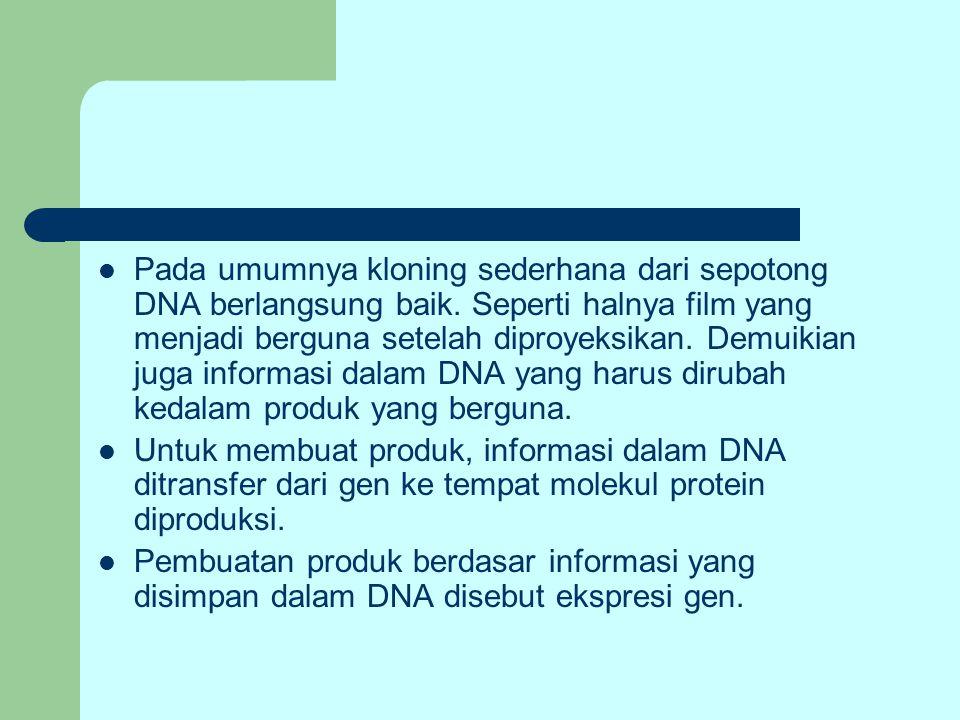 Pada umumnya kloning sederhana dari sepotong DNA berlangsung baik
