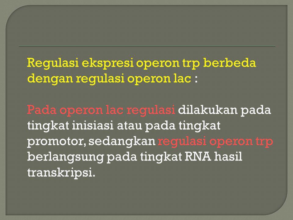 Regulasi ekspresi operon trp berbeda dengan regulasi operon lac :