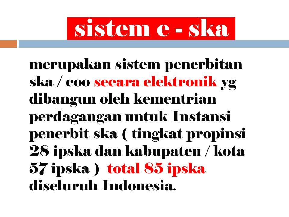 sistem e - ska