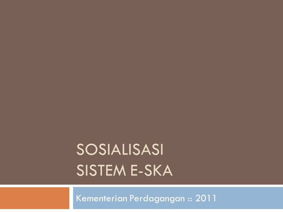 Sosialisasi Sistem e-SKA