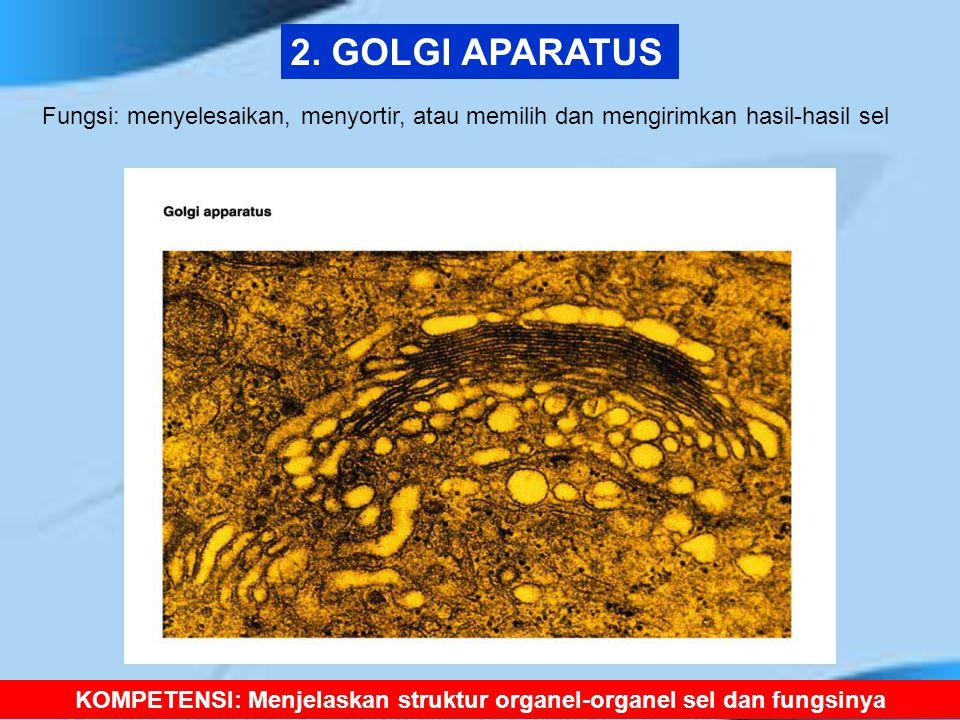 KOMPETENSI: Menjelaskan struktur organel-organel sel dan fungsinya