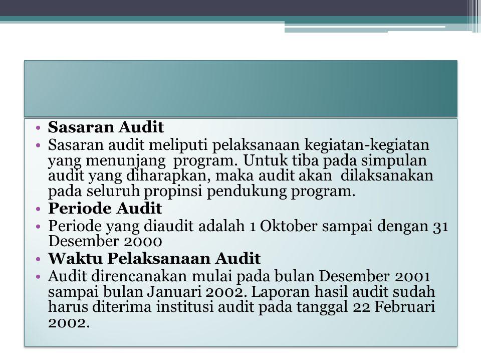 Sasaran Audit