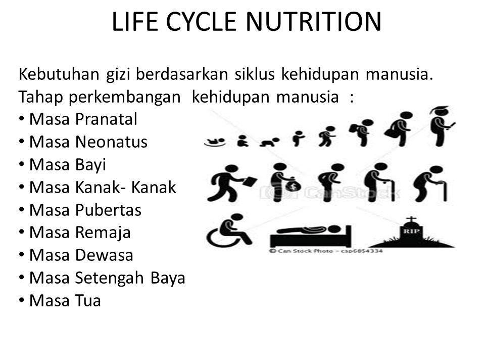 LIFE CYCLE NUTRITION Kebutuhan gizi berdasarkan siklus kehidupan manusia. Tahap perkembangan kehidupan manusia :