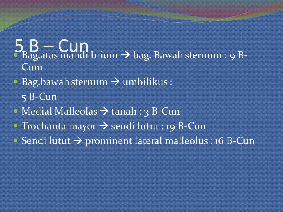 5 B – Cun Bag.atas mandi brium  bag. Bawah sternum : 9 B-Cum