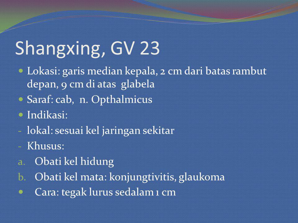 Shangxing, GV 23 Lokasi: garis median kepala, 2 cm dari batas rambut depan, 9 cm di atas glabela. Saraf: cab, n. Opthalmicus.
