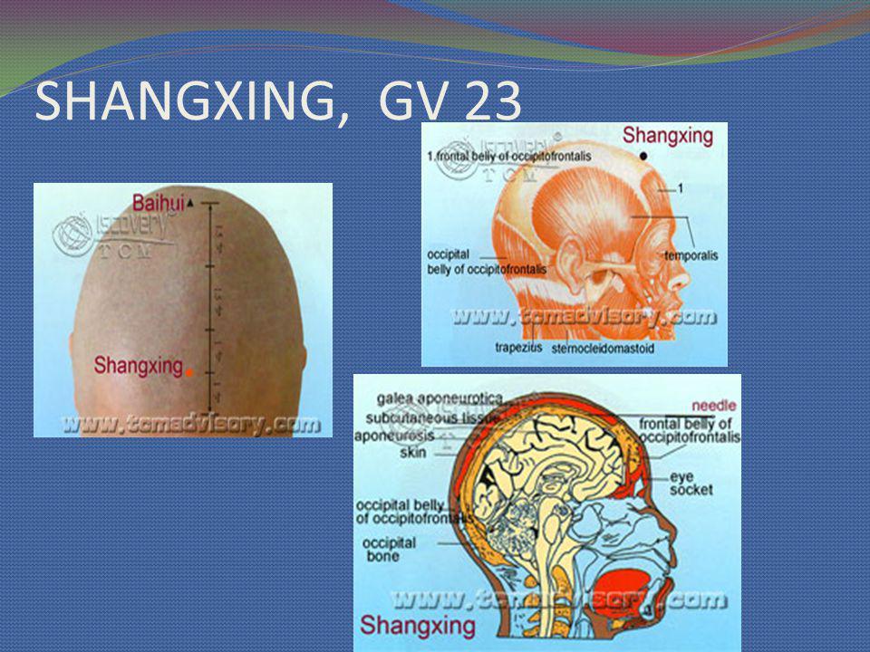 SHANGXING, GV 23
