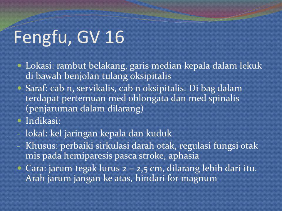 Fengfu, GV 16 Lokasi: rambut belakang, garis median kepala dalam lekuk di bawah benjolan tulang oksipitalis.
