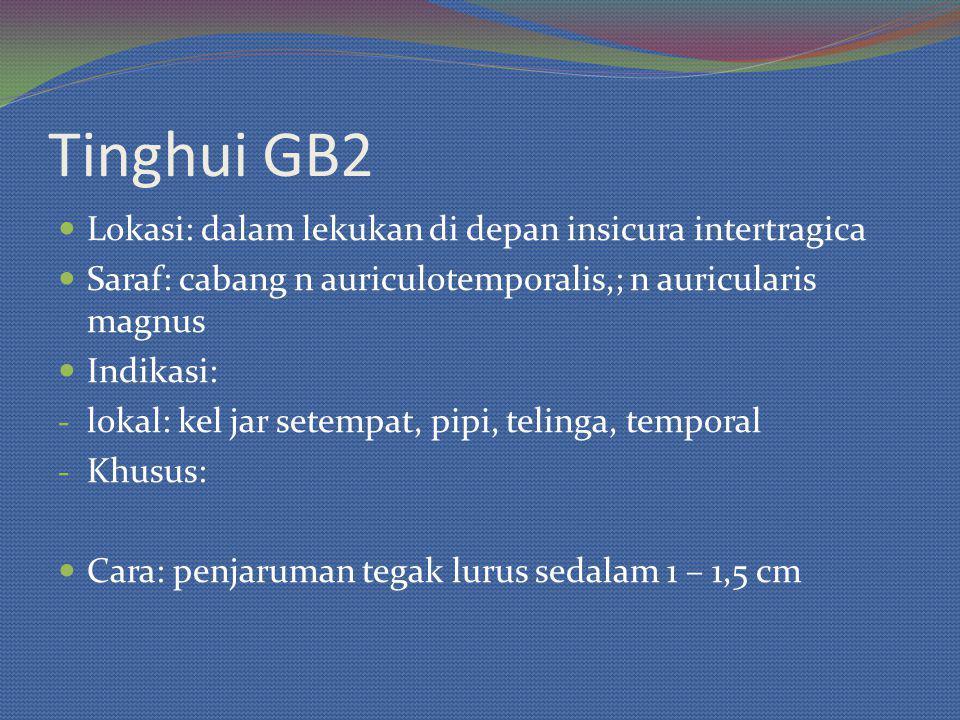 Tinghui GB2 Lokasi: dalam lekukan di depan insicura intertragica