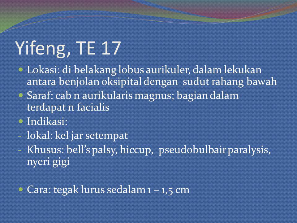 Yifeng, TE 17 Lokasi: di belakang lobus aurikuler, dalam lekukan antara benjolan oksipital dengan sudut rahang bawah.