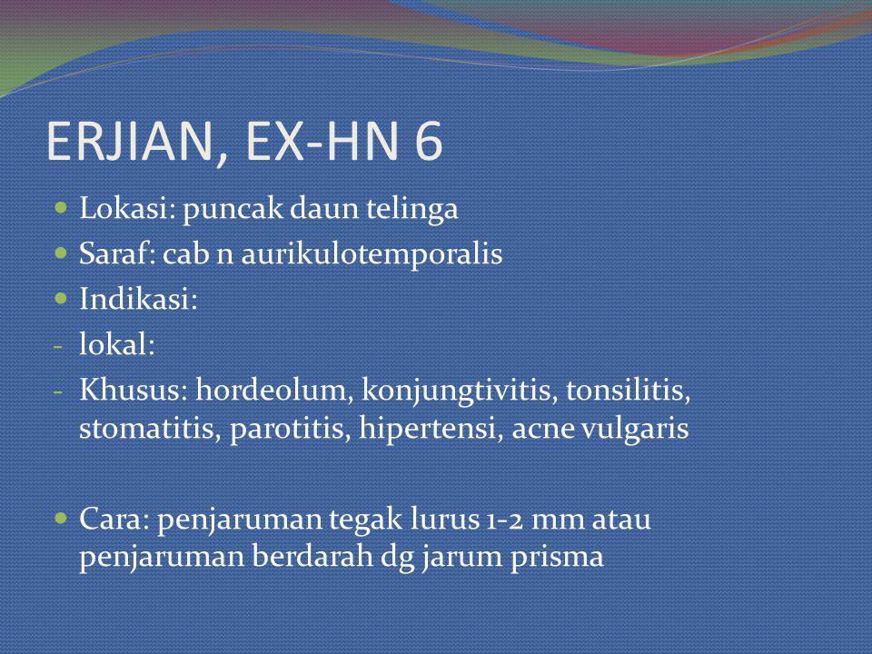 ERJIAN, EX-HN 6 Lokasi: puncak daun telinga