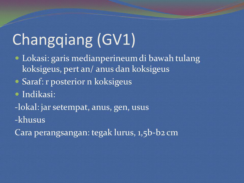 Changqiang (GV1) Lokasi: garis medianperineum di bawah tulang koksigeus, pert an/ anus dan koksigeus.