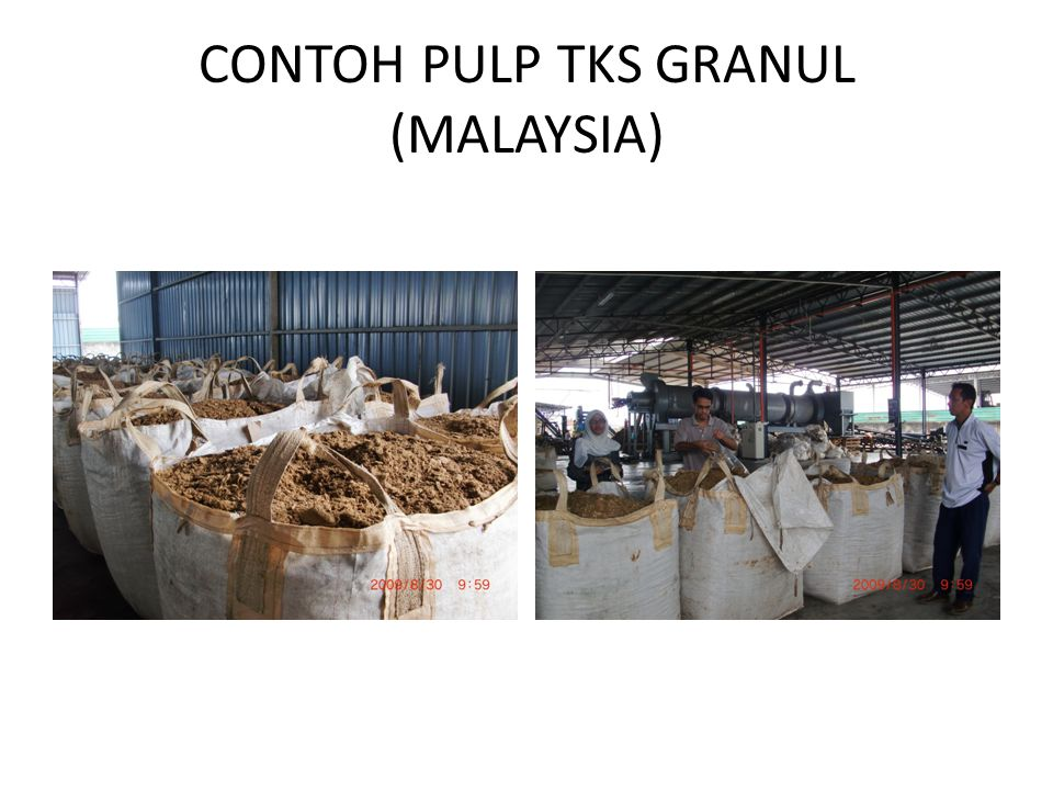 CONTOH PULP TKS GRANUL (MALAYSIA)