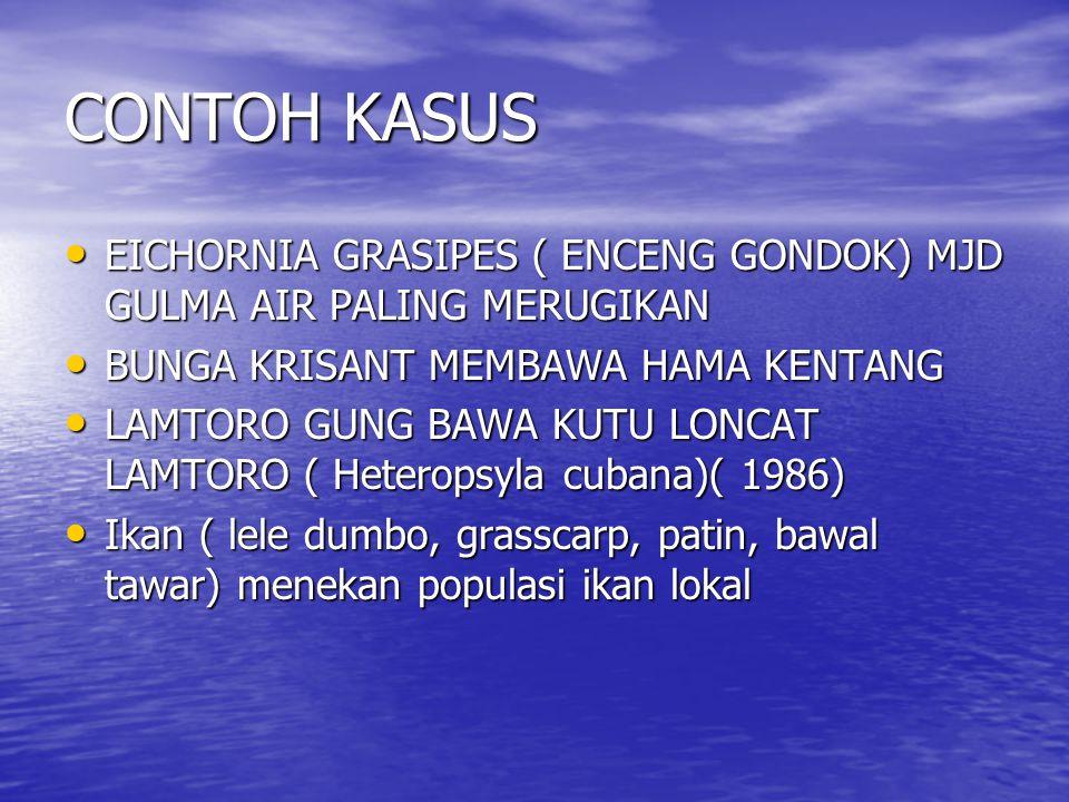 CONTOH KASUS EICHORNIA GRASIPES ( ENCENG GONDOK) MJD GULMA AIR PALING MERUGIKAN. BUNGA KRISANT MEMBAWA HAMA KENTANG.