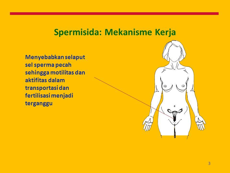 Spermisida: Mekanisme Kerja