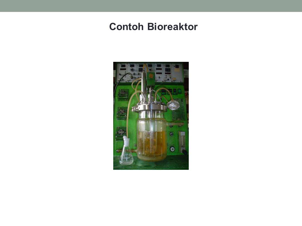 Contoh Bioreaktor