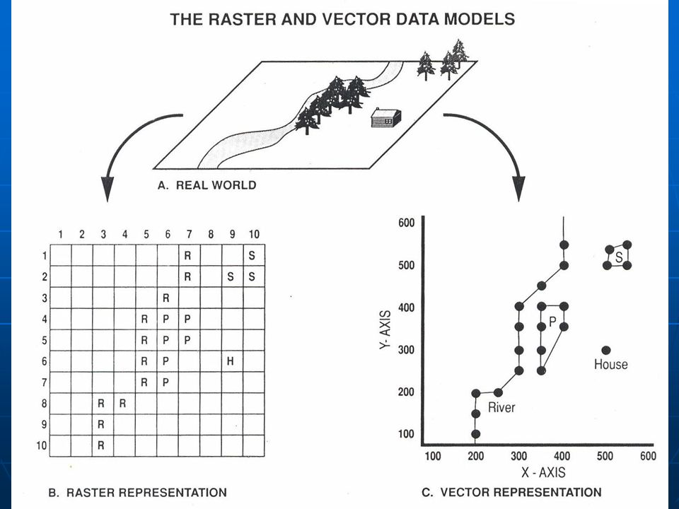 Raster VS Vektor