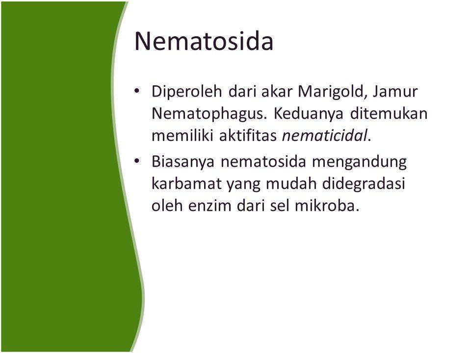 Nematosida Diperoleh dari akar Marigold, Jamur Nematophagus. Keduanya ditemukan memiliki aktifitas nematicidal.