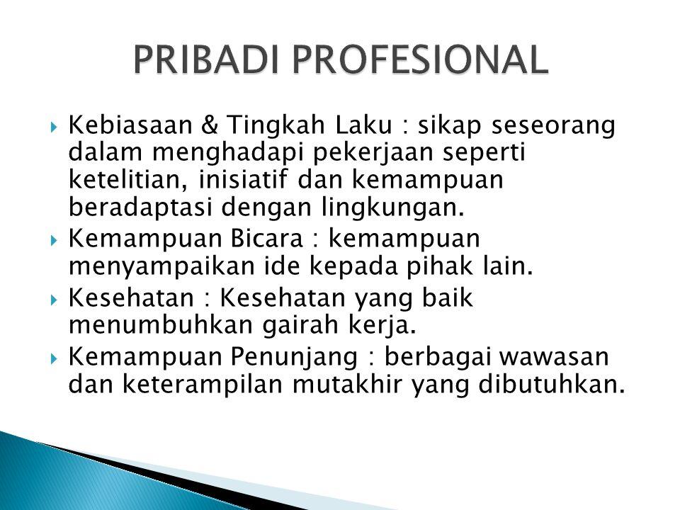 PRIBADI PROFESIONAL