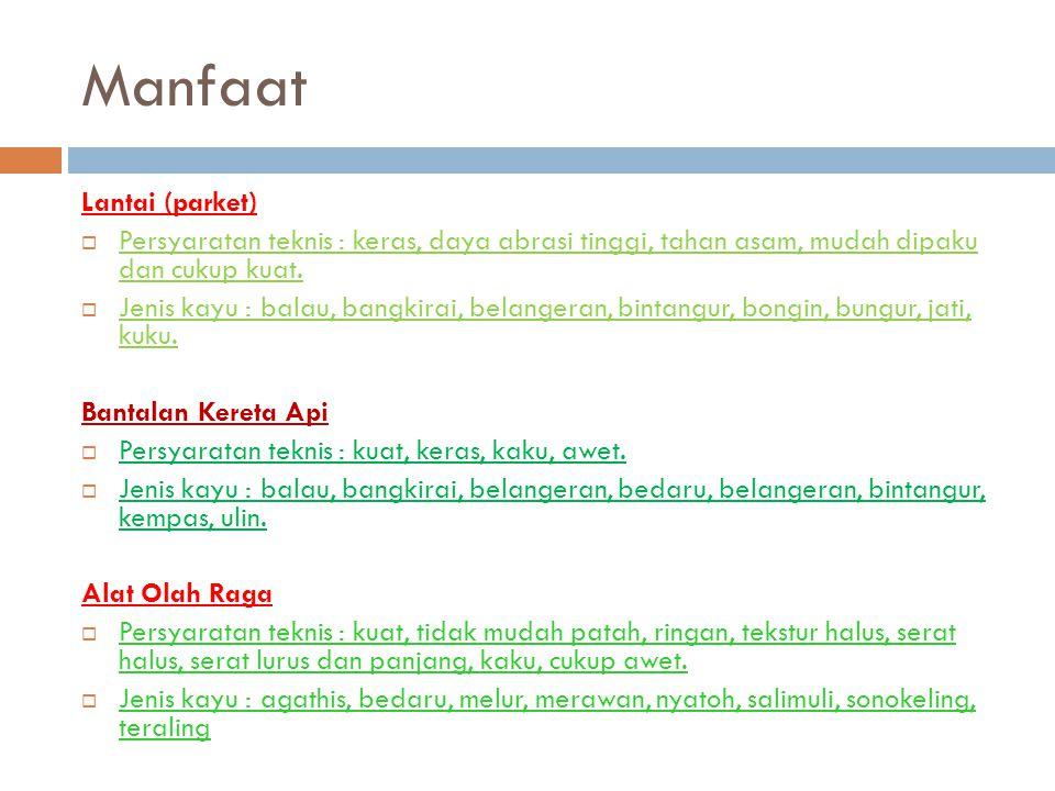 Manfaat Lantai (parket)