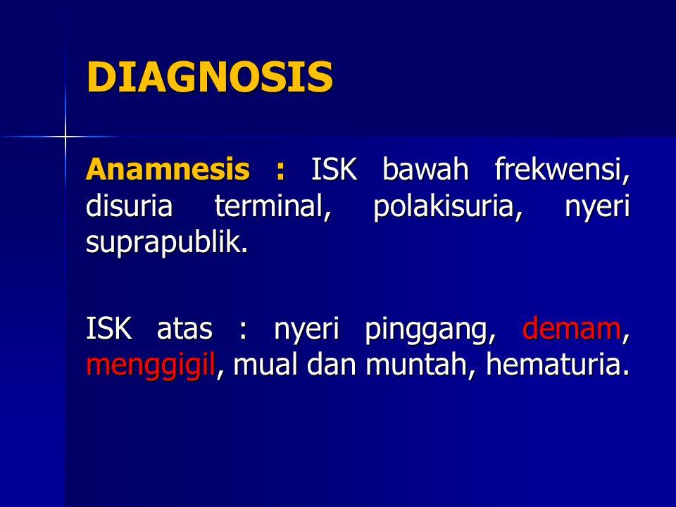 DIAGNOSIS Anamnesis : ISK bawah frekwensi, disuria terminal, polakisuria, nyeri suprapublik.