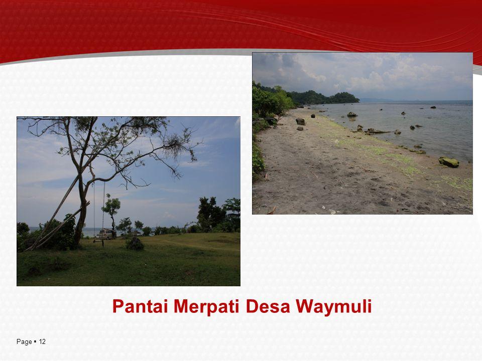 Pantai Merpati Desa Waymuli