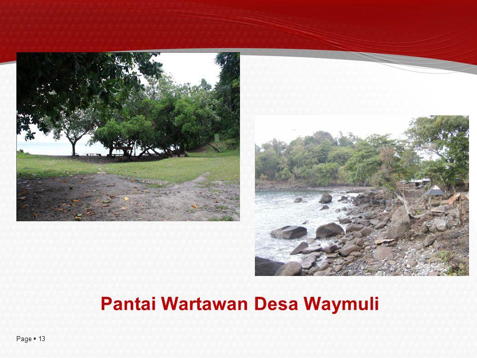 Pantai Wartawan Desa Waymuli