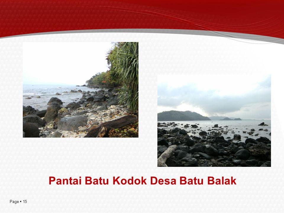 Pantai Batu Kodok Desa Batu Balak