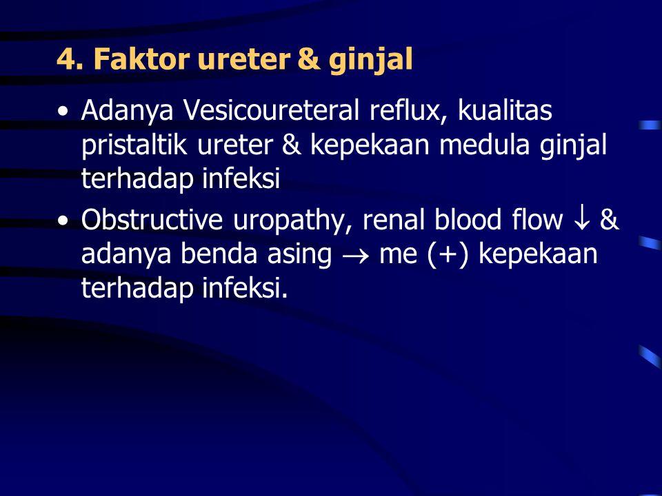 4. Faktor ureter & ginjal Adanya Vesicoureteral reflux, kualitas pristaltik ureter & kepekaan medula ginjal terhadap infeksi.