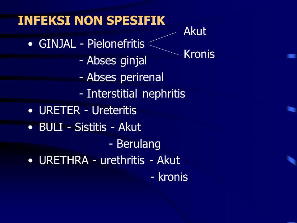 INFEKSI NON SPESIFIK Akut GINJAL - Pielonefritis - Abses ginjal Kronis