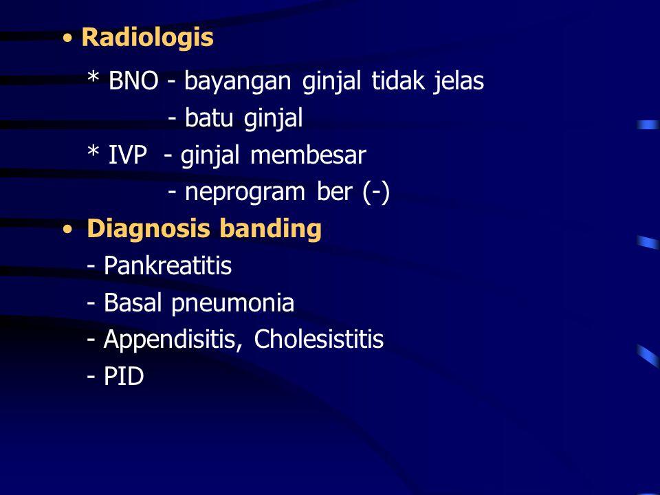 Radiologis * BNO - bayangan ginjal tidak jelas. - batu ginjal. * IVP - ginjal membesar. - neprogram ber (-)