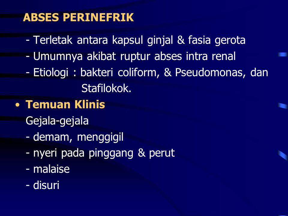 ABSES PERINEFRIK - Terletak antara kapsul ginjal & fasia gerota. - Umumnya akibat ruptur abses intra renal.