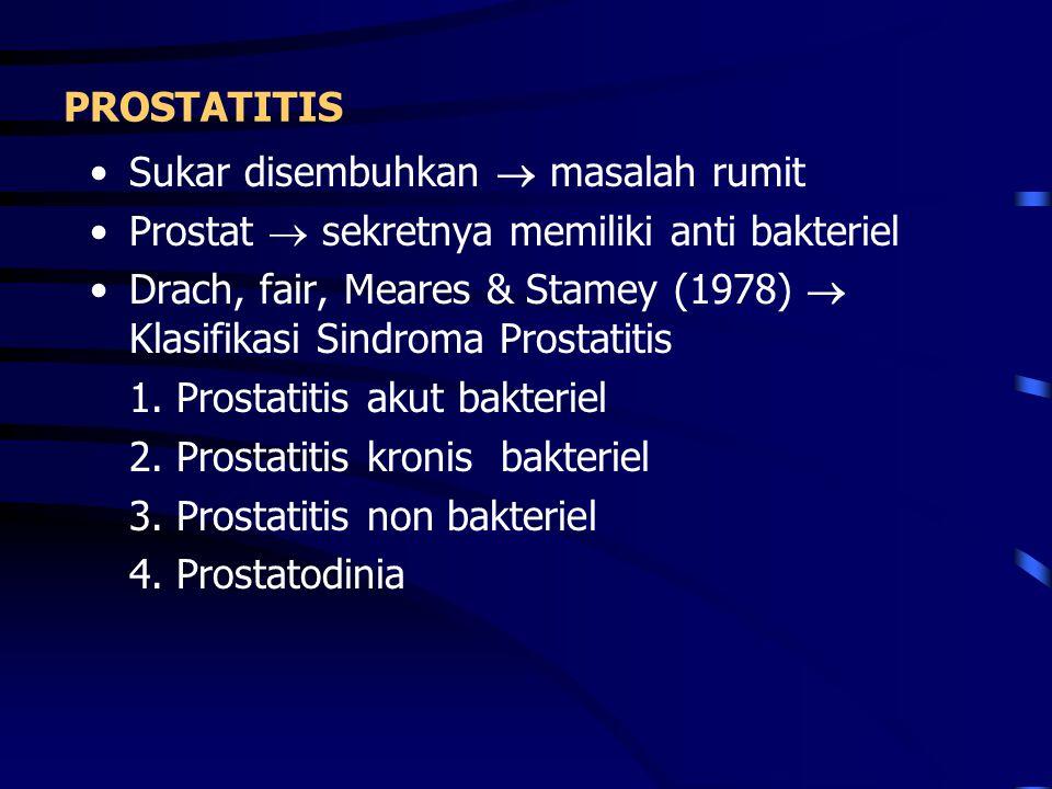 PROSTATITIS Sukar disembuhkan  masalah rumit. Prostat  sekretnya memiliki anti bakteriel.