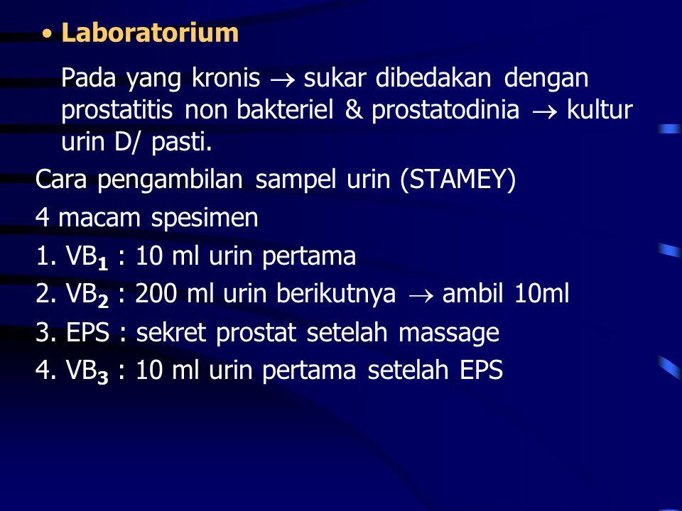 Laboratorium Pada yang kronis  sukar dibedakan dengan prostatitis non bakteriel & prostatodinia  kultur urin D/ pasti.