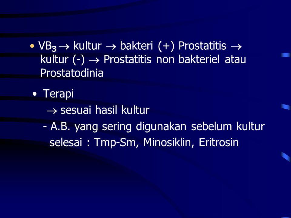 VB3  kultur  bakteri (+) Prostatitis  kultur (-)  Prostatitis non bakteriel atau Prostatodinia