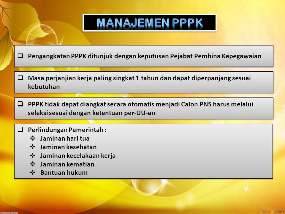 MANAJEMEN PPPK Pengangkatan PPPK ditunjuk dengan keputusan Pejabat Pembina Kepegawaian.