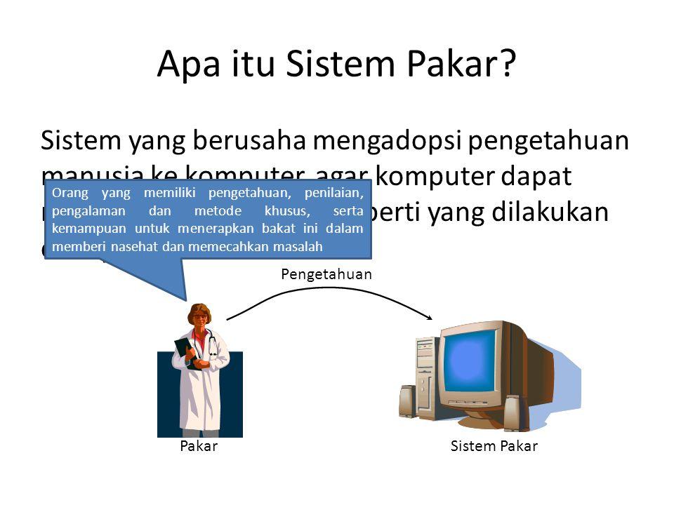 Apa itu Sistem Pakar