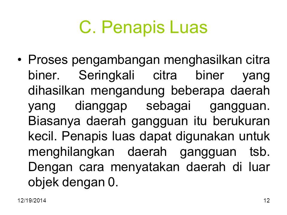 C. Penapis Luas